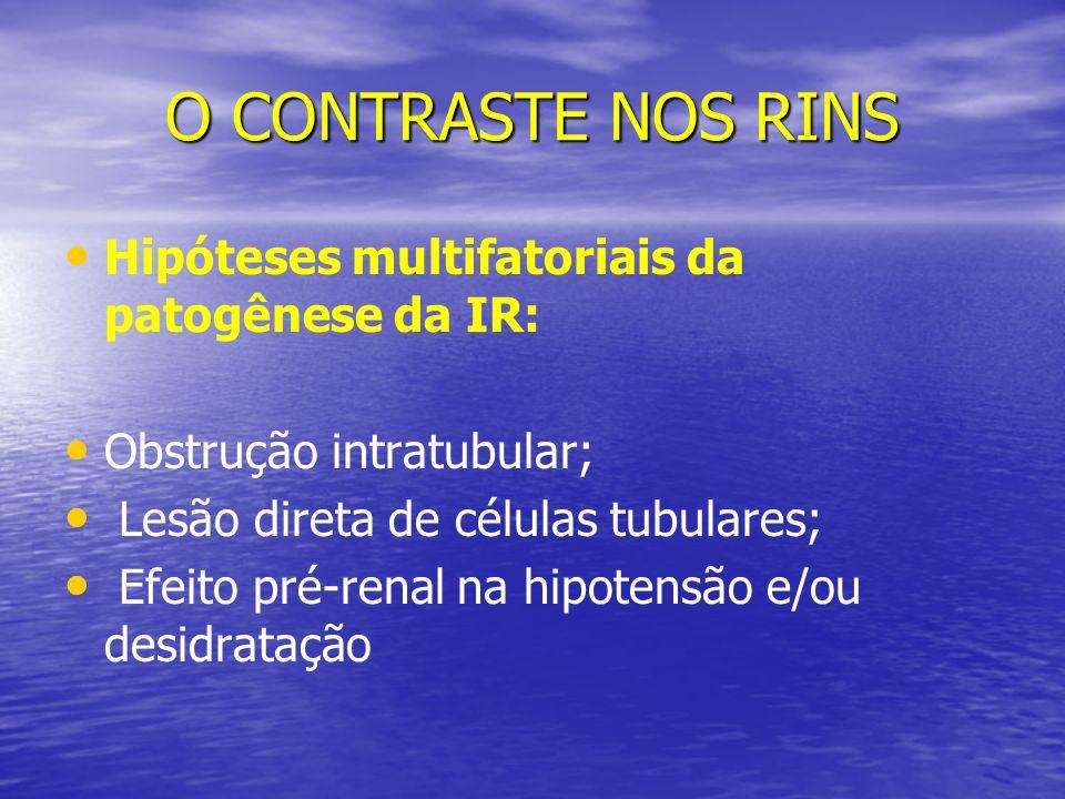 O CONTRASTE NOS RINS Hipóteses multifatoriais da patogênese da IR: