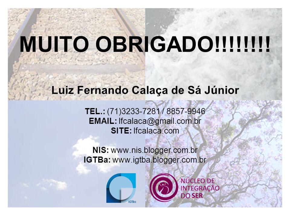 Luiz Fernando Calaça de Sá Júnior