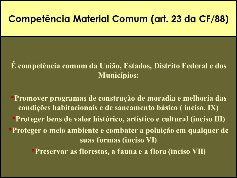 Competência Material Comum (art. 23 da CF/88)