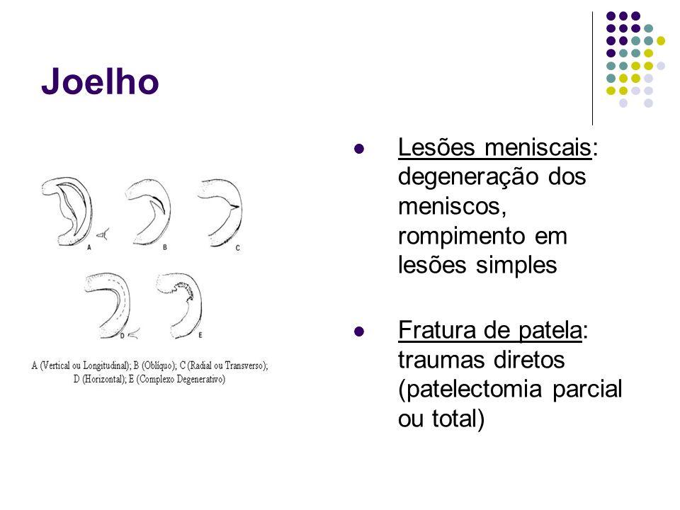 Joelho Lesões meniscais: degeneração dos meniscos, rompimento em lesões simples.