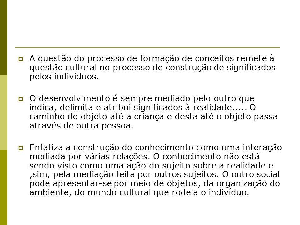 A questão do processo de formação de conceitos remete à questão cultural no processo de construção de significados pelos indivíduos.