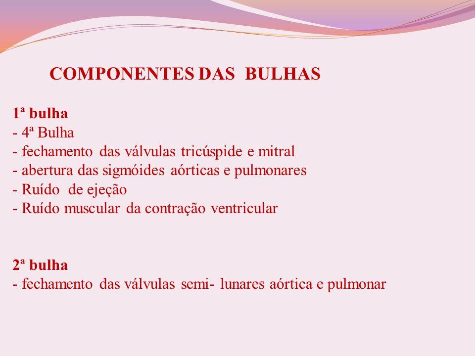 COMPONENTES DAS BULHAS