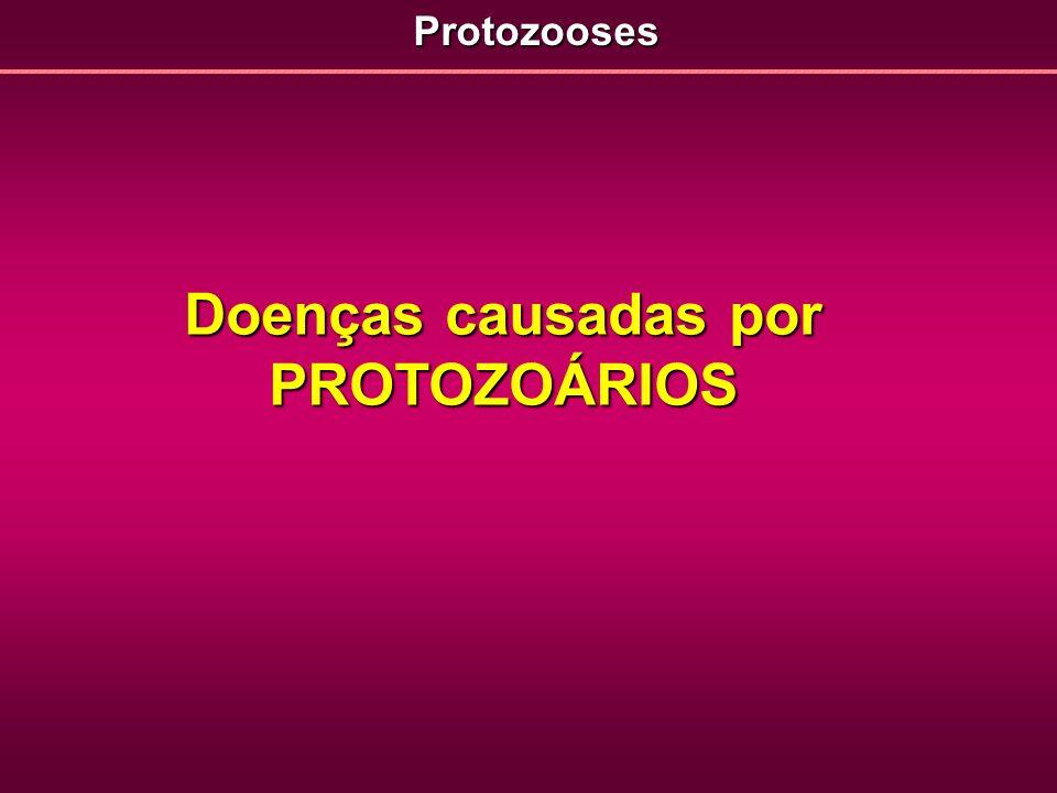 Doenças causadas por PROTOZOÁRIOS