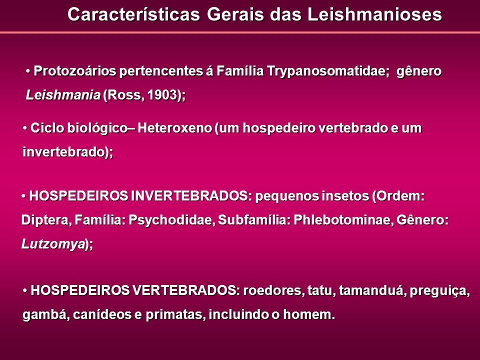 Características Gerais das Leishmanioses