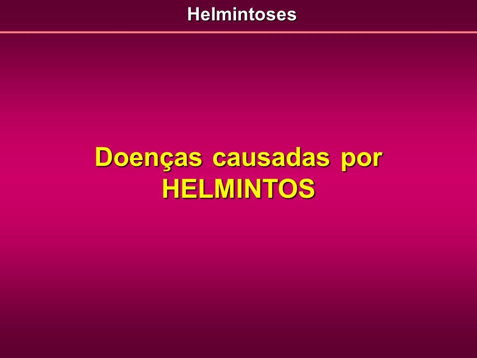 Doenças causadas por HELMINTOS