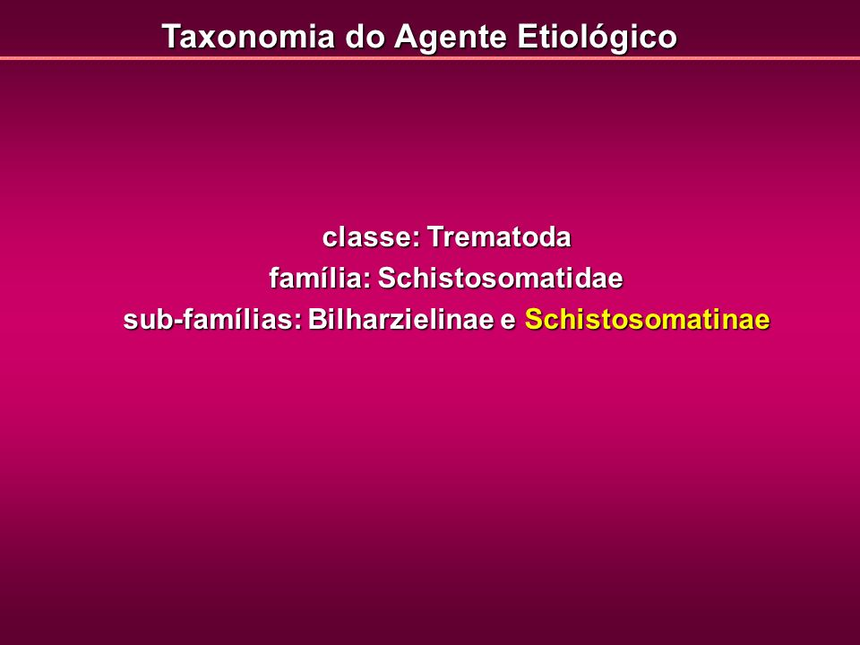 Taxonomia do Agente Etiológico