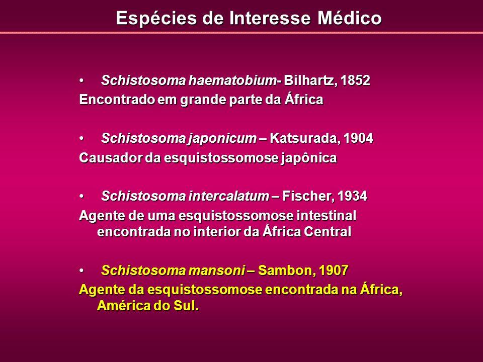 Espécies de Interesse Médico