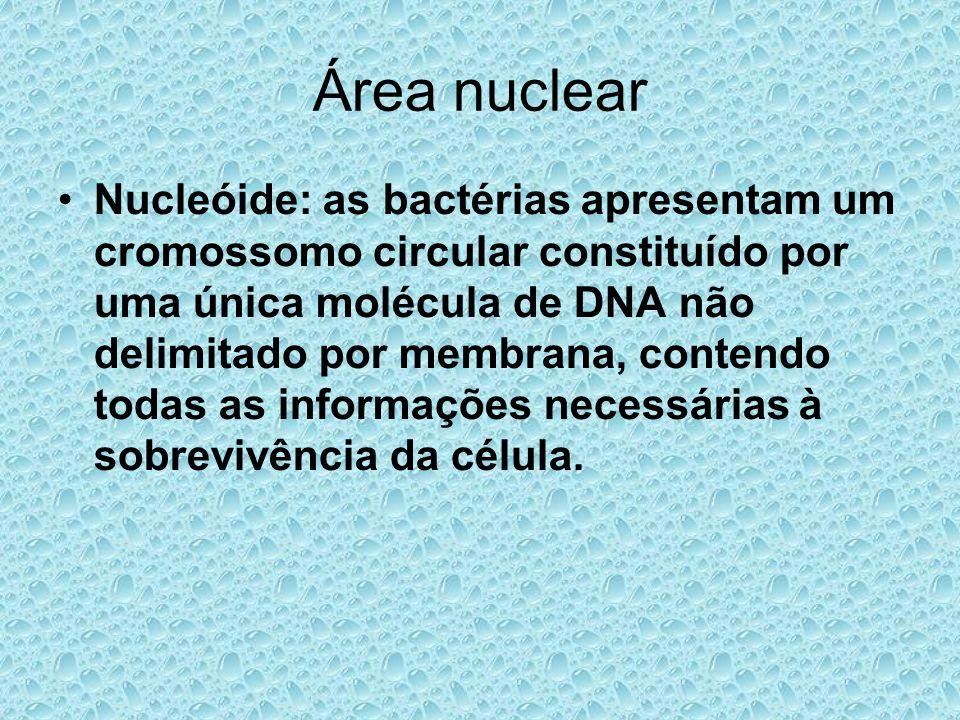 Área nuclear