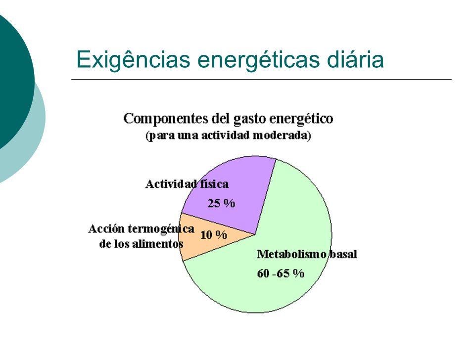 Exigências energéticas diária