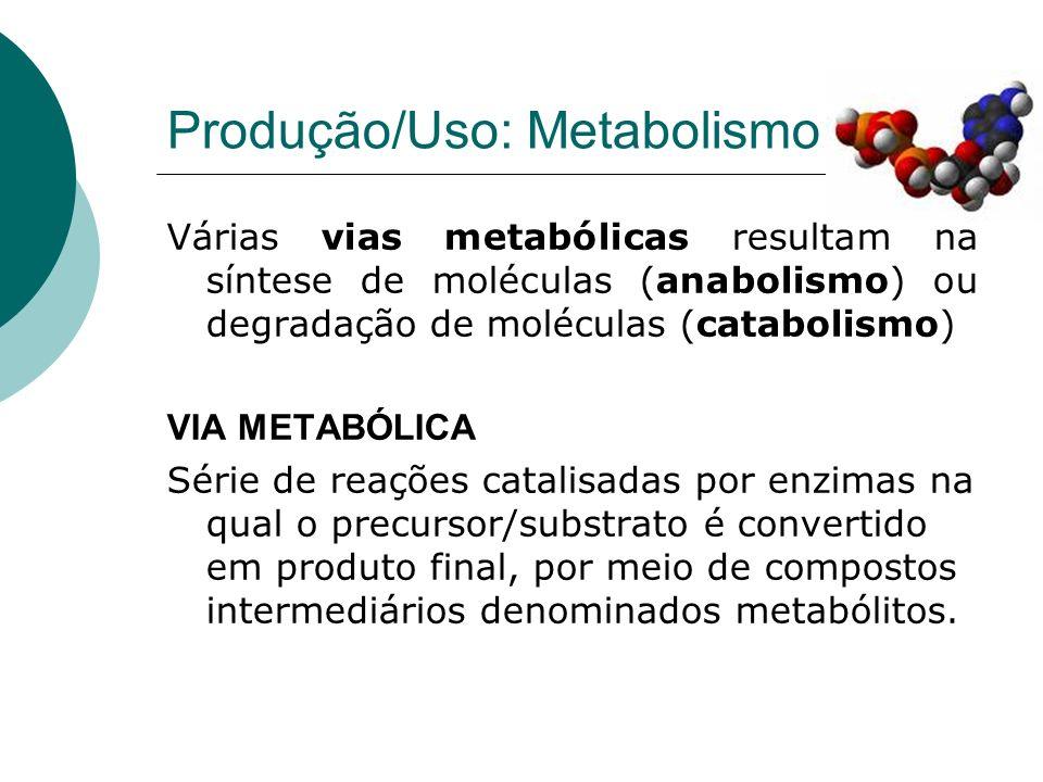 Produção/Uso: Metabolismo