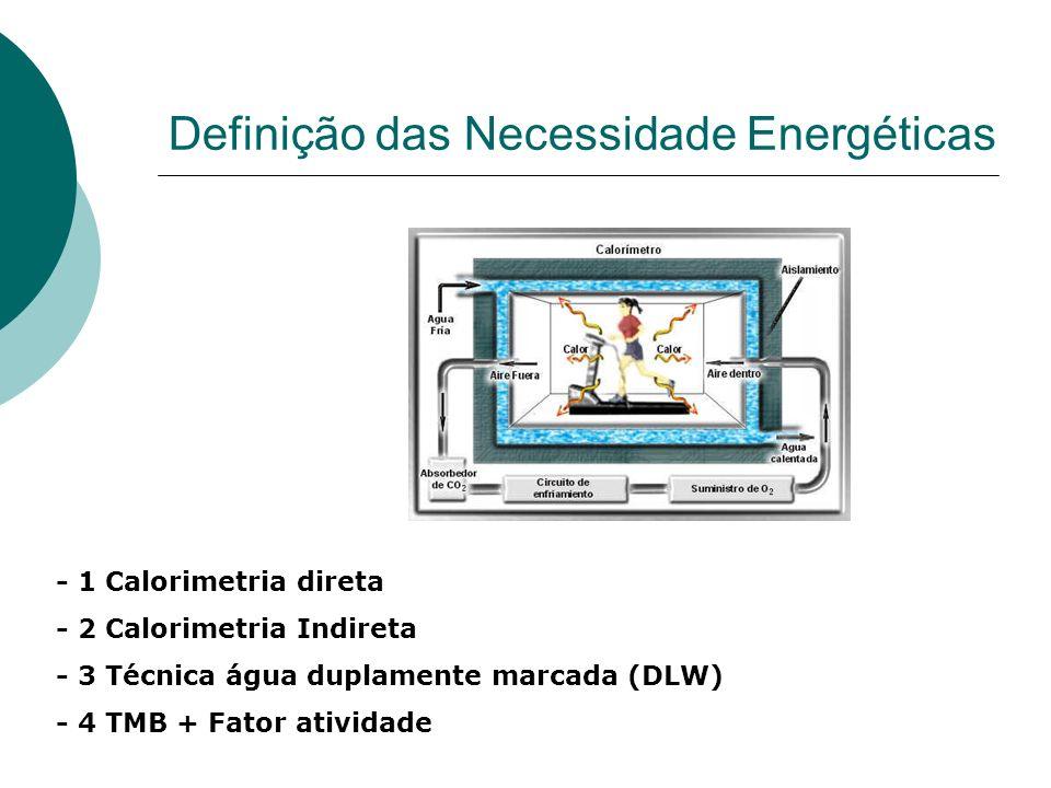 Definição das Necessidade Energéticas