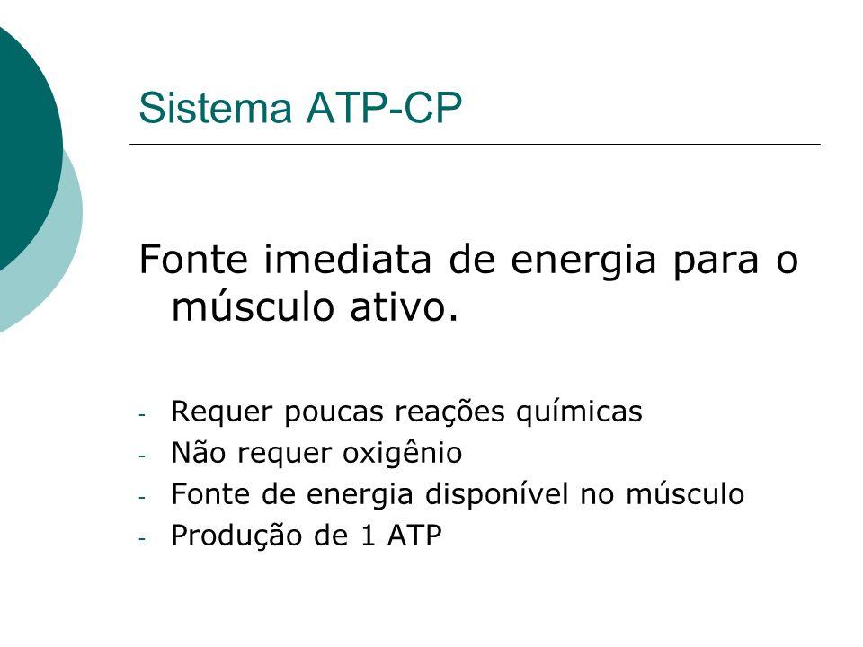 Sistema ATP-CP Fonte imediata de energia para o músculo ativo.