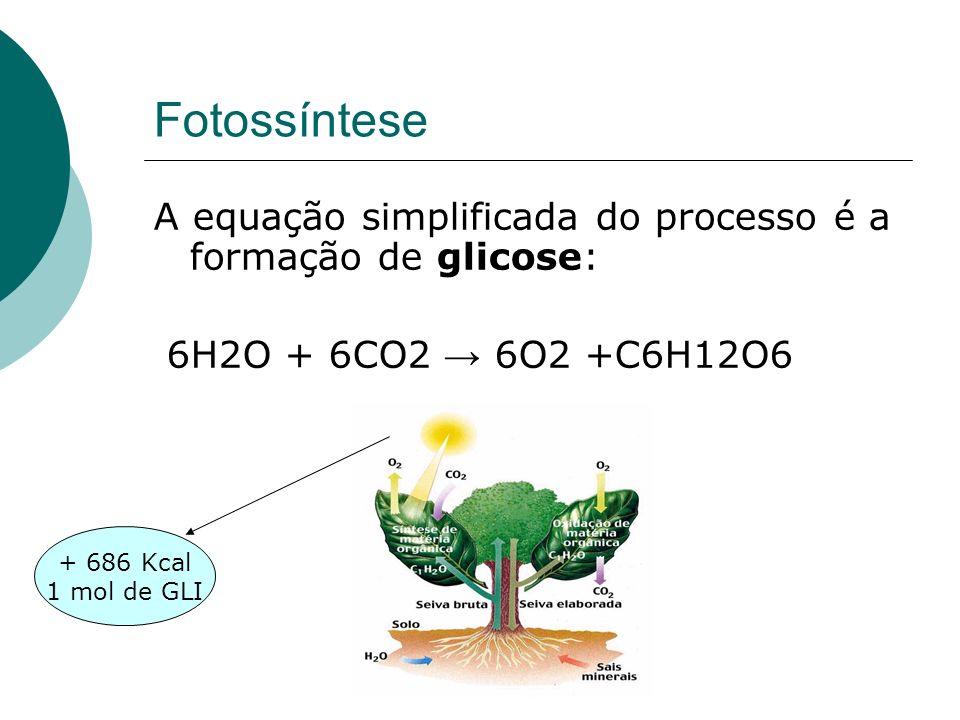 FotossínteseA equação simplificada do processo é a formação de glicose: 6H2O + 6CO2 → 6O2 +C6H12O6.