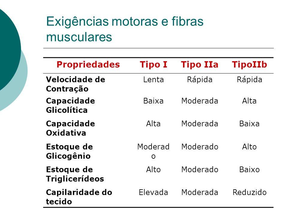 Exigências motoras e fibras musculares