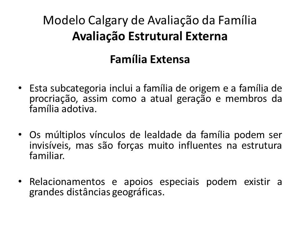 Modelo Calgary de Avaliação da Família Avaliação Estrutural Externa