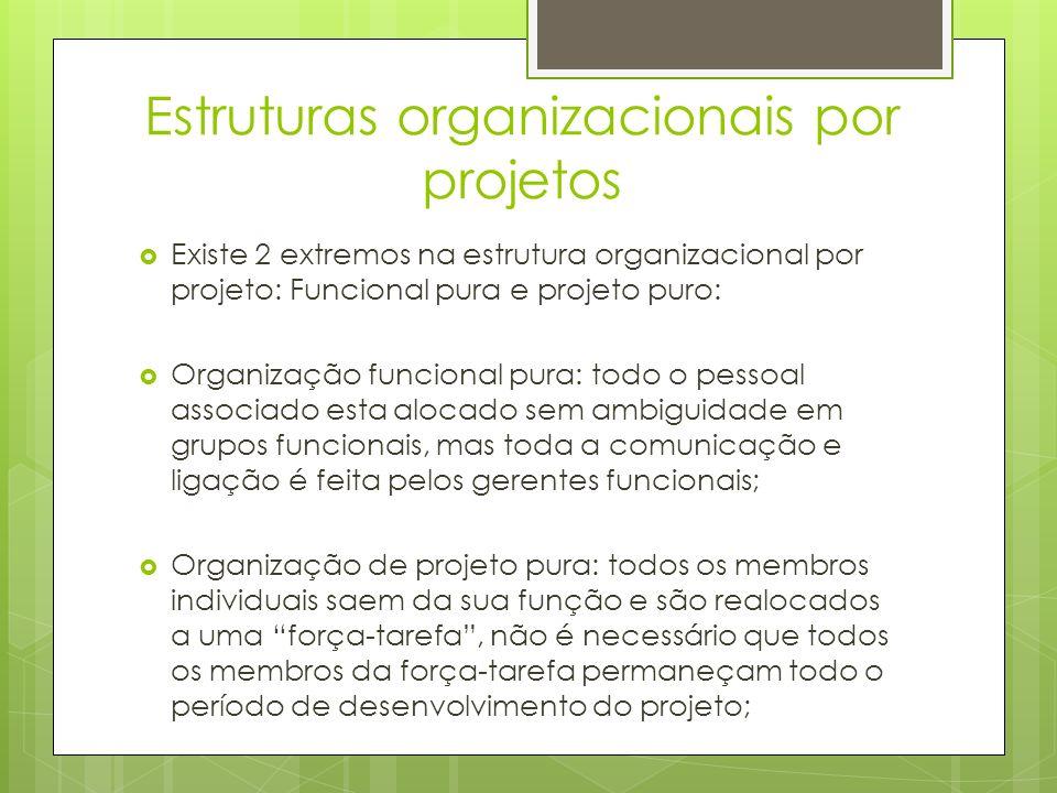 Estruturas organizacionais por projetos