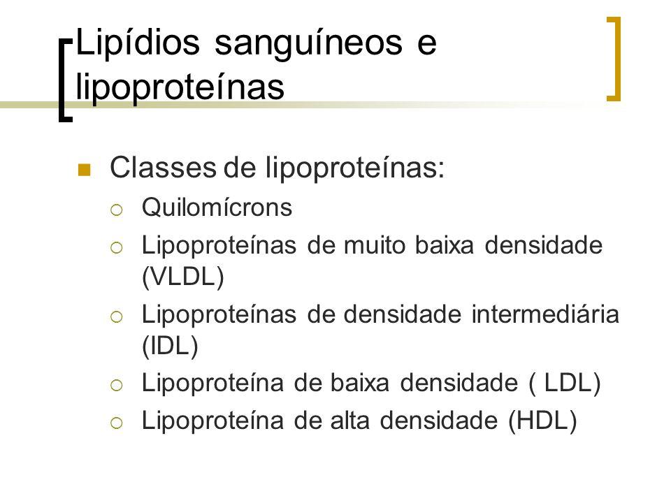 Lipídios sanguíneos e lipoproteínas
