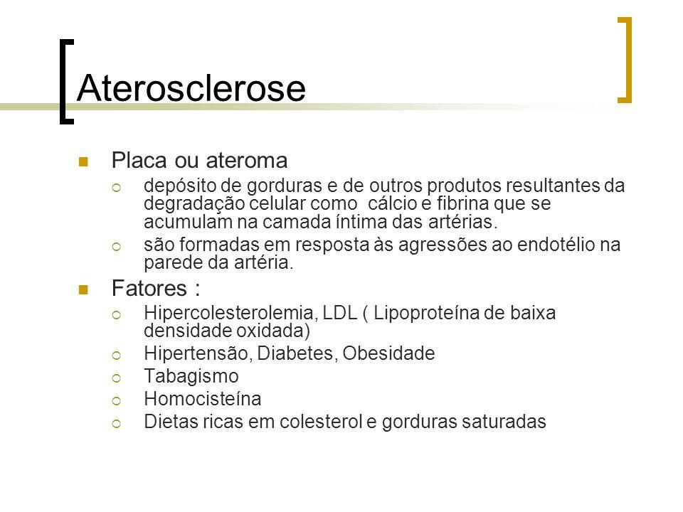 Aterosclerose Placa ou ateroma Fatores :