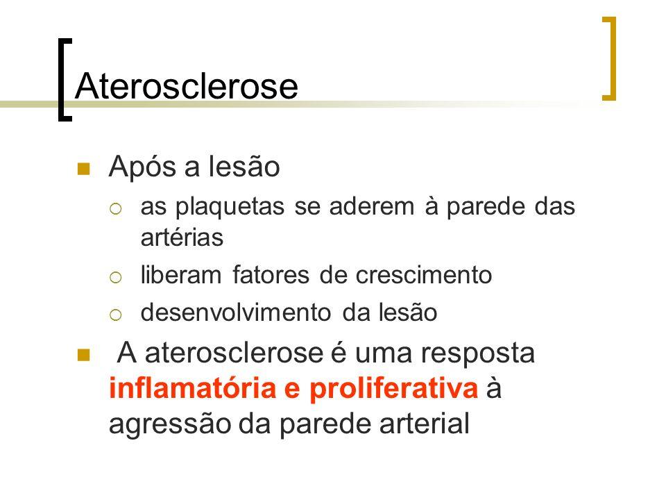 Aterosclerose Após a lesão