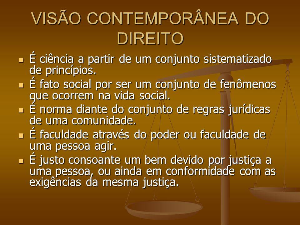 VISÃO CONTEMPORÂNEA DO DIREITO