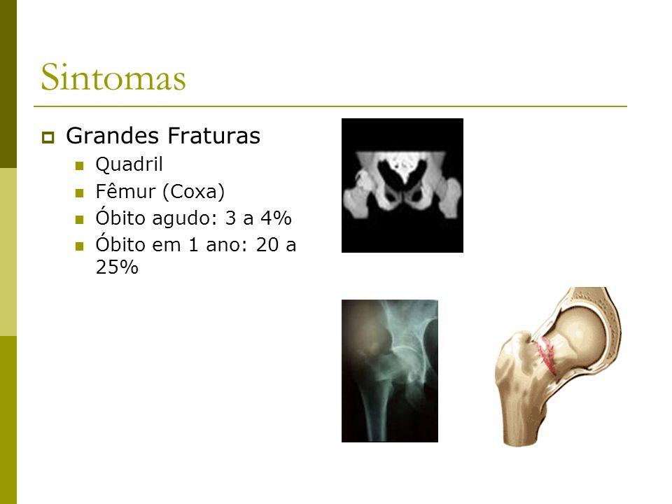 Sintomas Grandes Fraturas Quadril Fêmur (Coxa) Óbito agudo: 3 a 4%