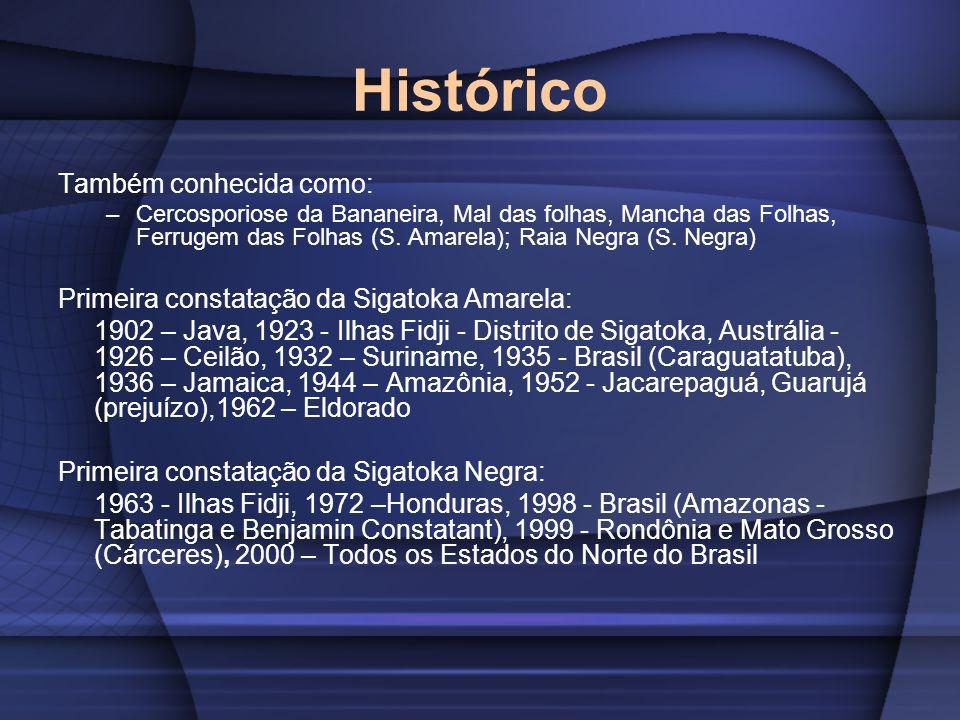 Histórico Também conhecida como: