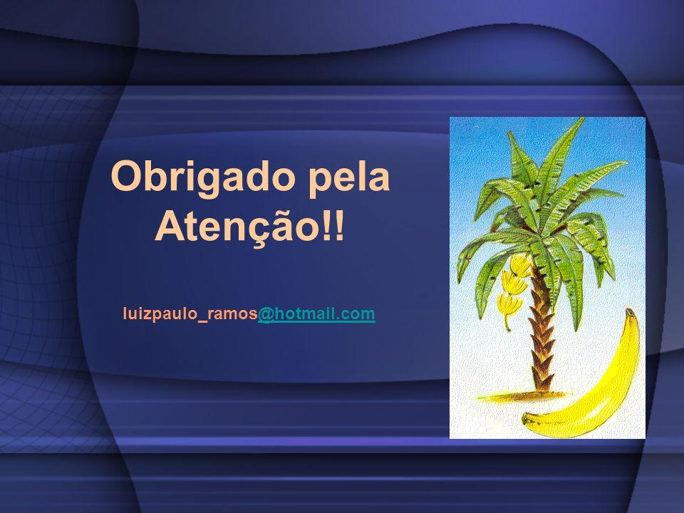 Obrigado pela Atenção!! luizpaulo_ramos@hotmail.com