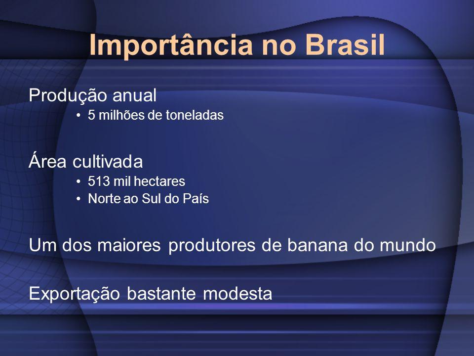 Importância no Brasil Produção anual Área cultivada