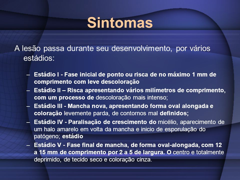 SintomasA lesão passa durante seu desenvolvimento, por vários estádios: