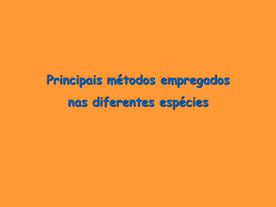 Principais métodos empregados nas diferentes espécies