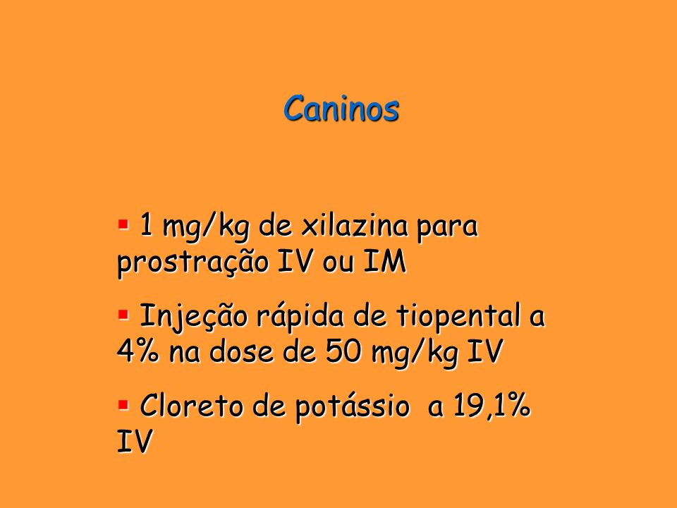 Caninos 1 mg/kg de xilazina para prostração IV ou IM