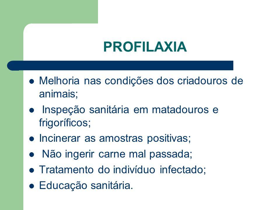 PROFILAXIA Melhoria nas condições dos criadouros de animais;