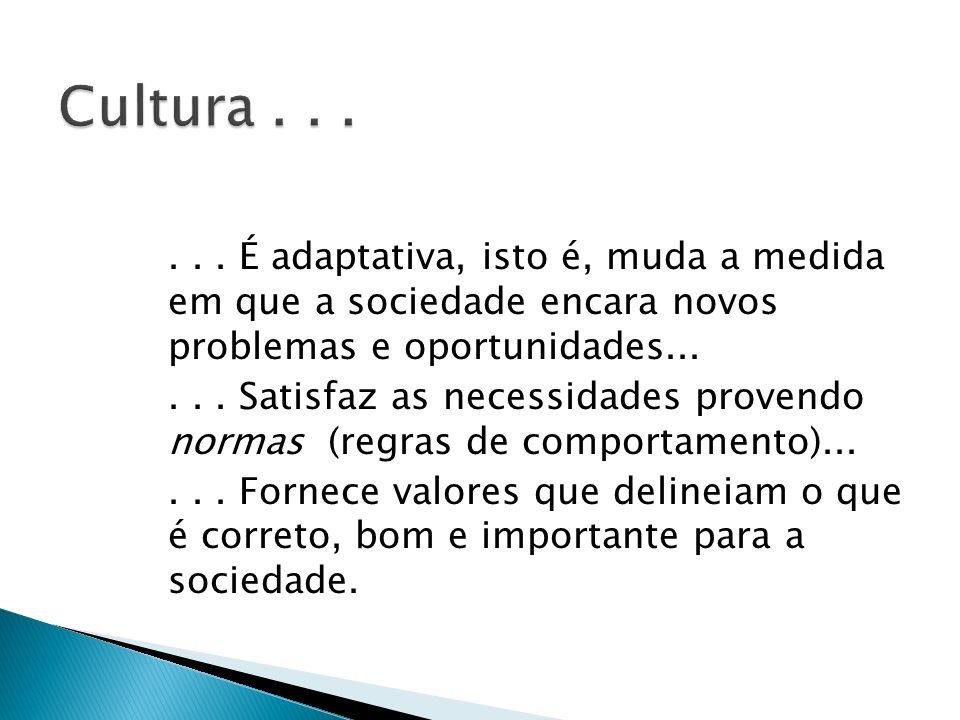 Cultura . . . . . . É adaptativa, isto é, muda a medida em que a sociedade encara novos problemas e oportunidades...