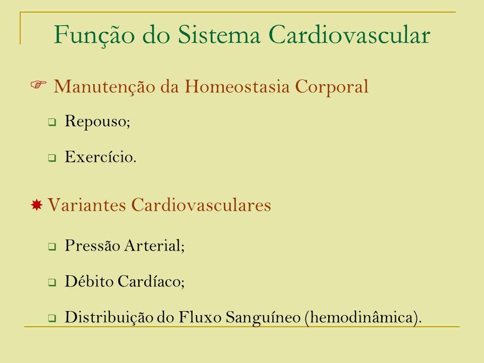 Função do Sistema Cardiovascular