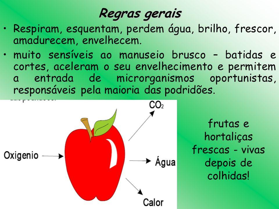 frutas e hortaliças frescas - vivas depois de colhidas!