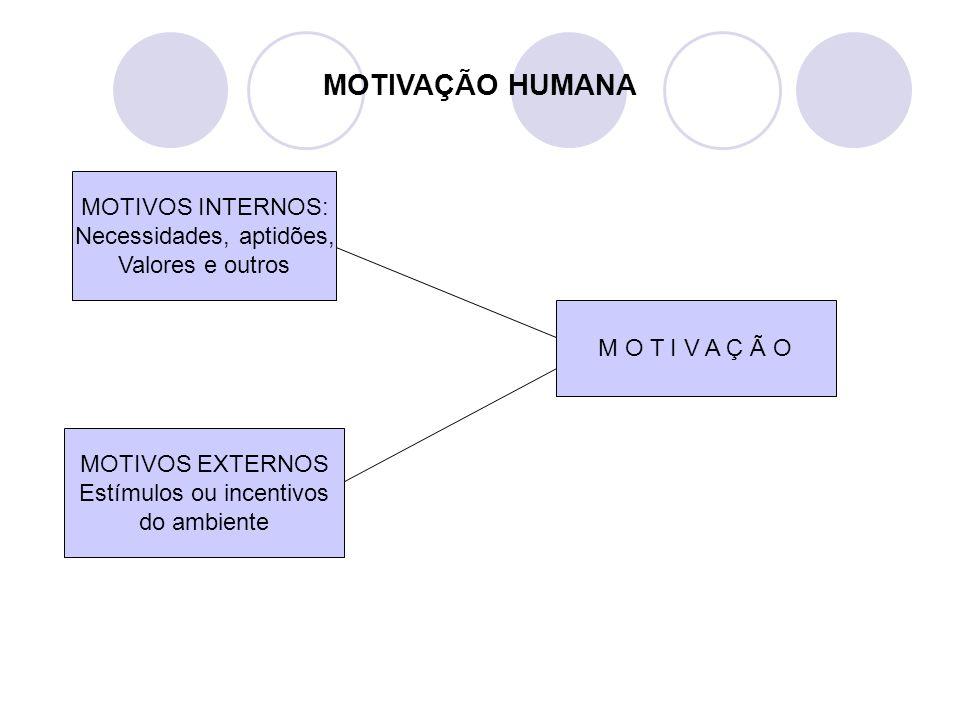 MOTIVAÇÃO HUMANA MOTIVOS INTERNOS: Necessidades, aptidões,