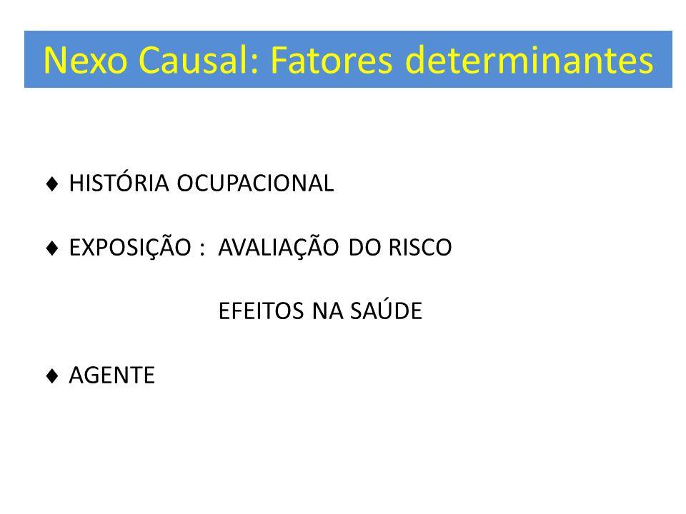 Nexo Causal: Fatores determinantes