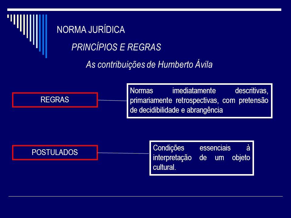 As contribuições de Humberto Ávila