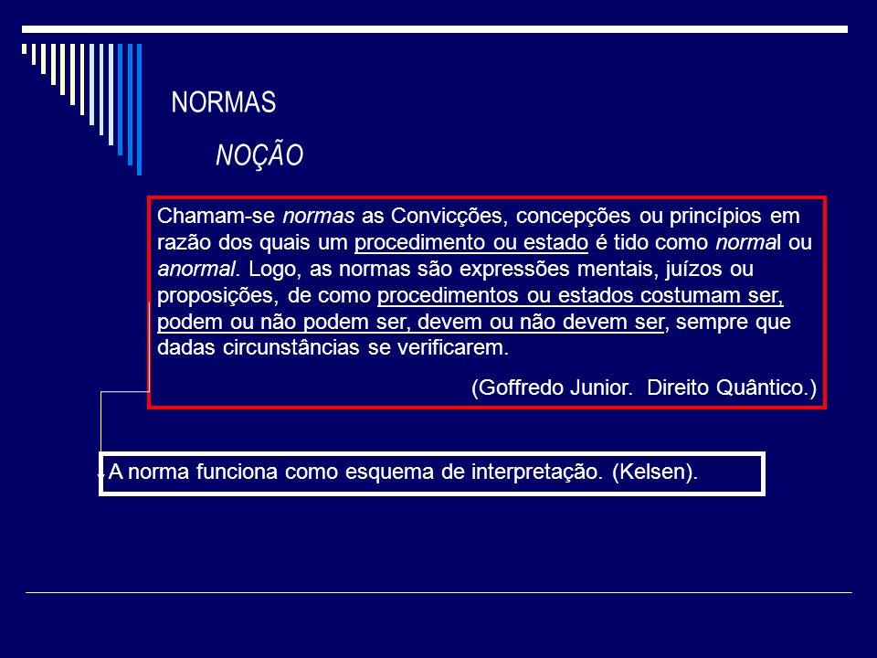 NORMAS NOÇÃO.