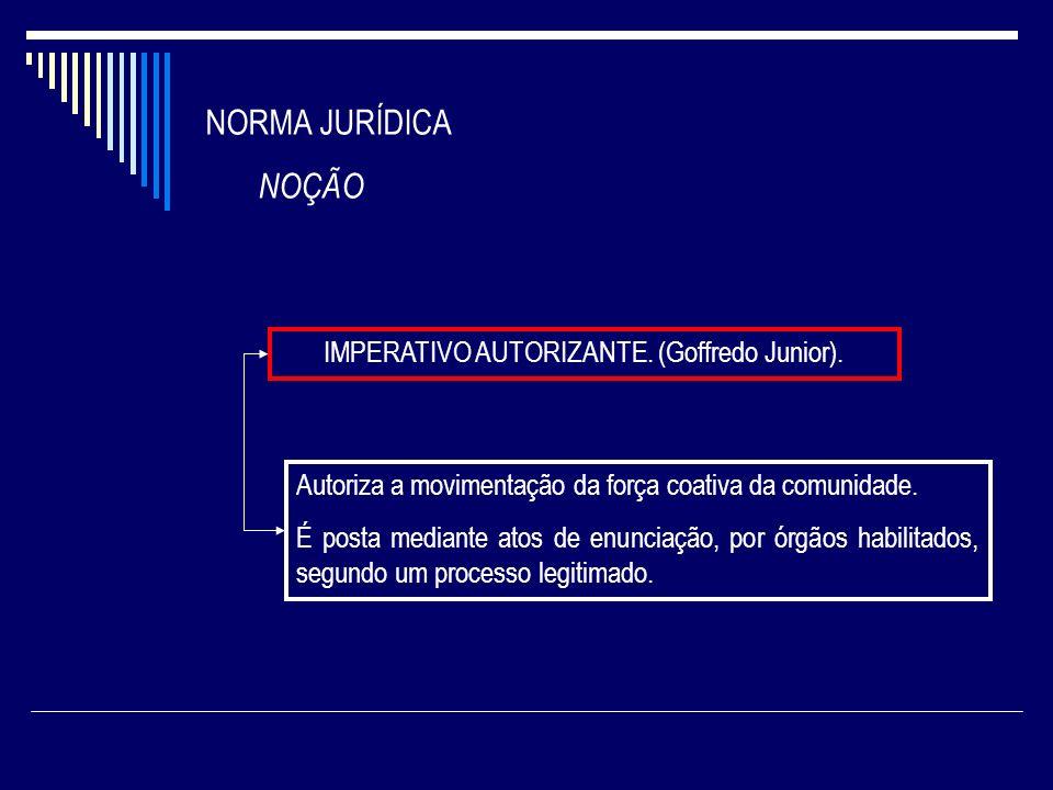 IMPERATIVO AUTORIZANTE. (Goffredo Junior).