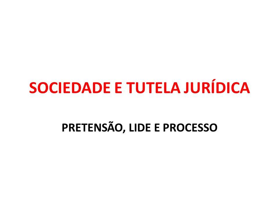 SOCIEDADE E TUTELA JURÍDICA