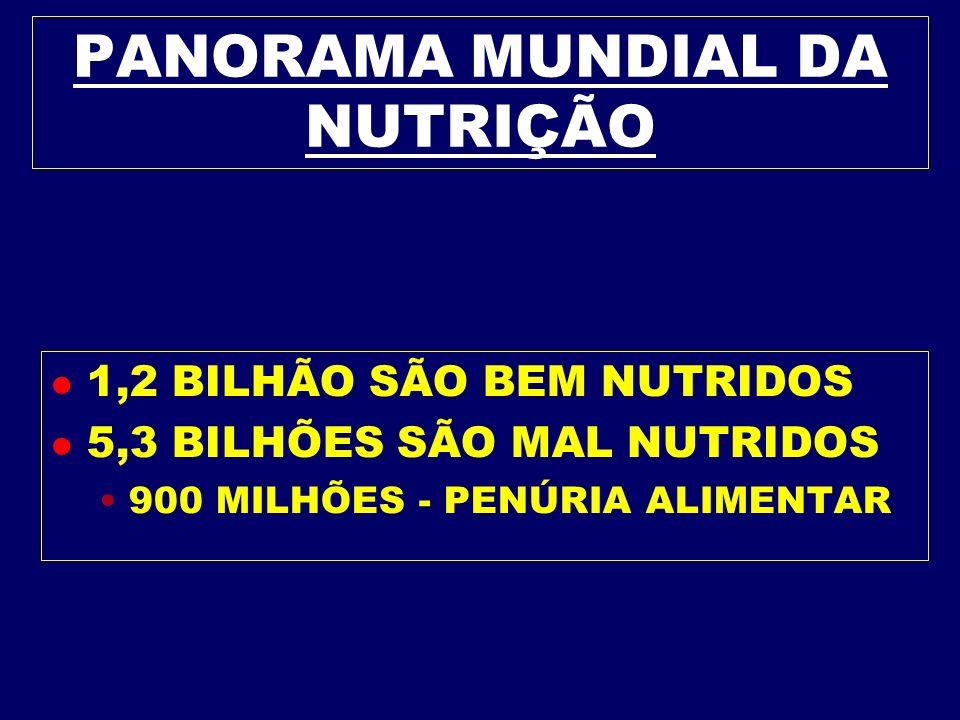 PANORAMA MUNDIAL DA NUTRIÇÃO