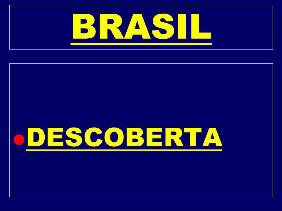BRASIL DESCOBERTA
