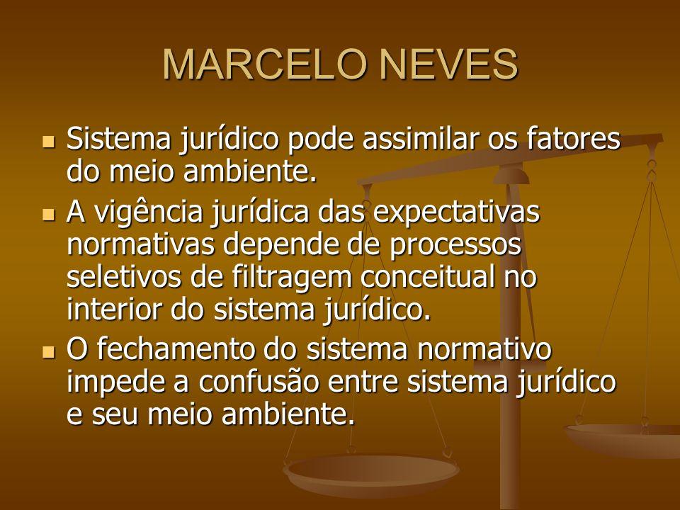 MARCELO NEVESSistema jurídico pode assimilar os fatores do meio ambiente.