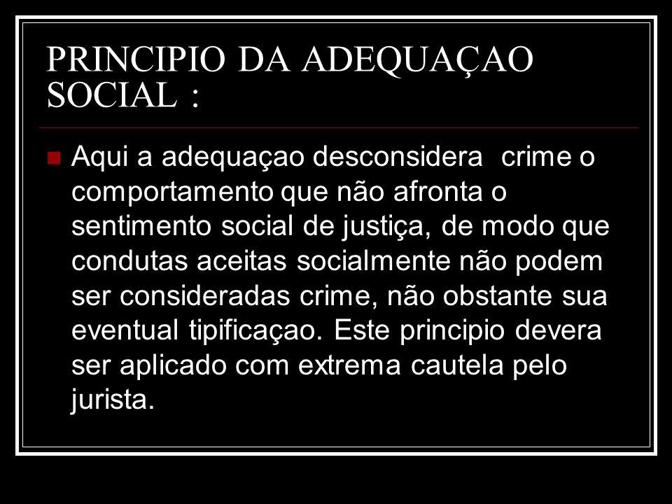 PRINCIPIO DA ADEQUAÇAO SOCIAL :