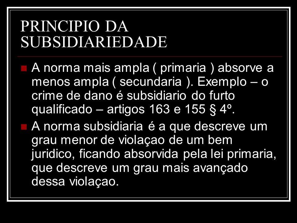 PRINCIPIO DA SUBSIDIARIEDADE