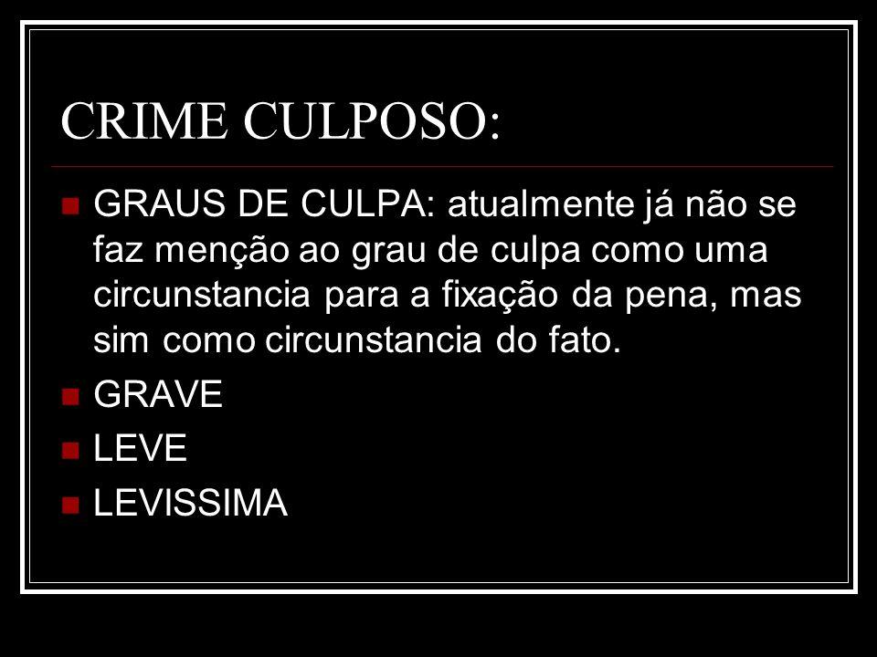 CRIME CULPOSO: