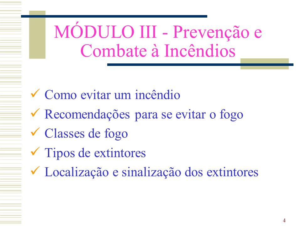 MÓDULO III - Prevenção e Combate à Incêndios