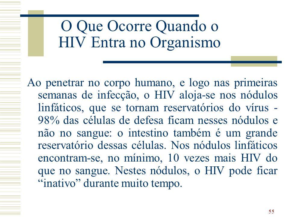 O Que Ocorre Quando o HIV Entra no Organismo