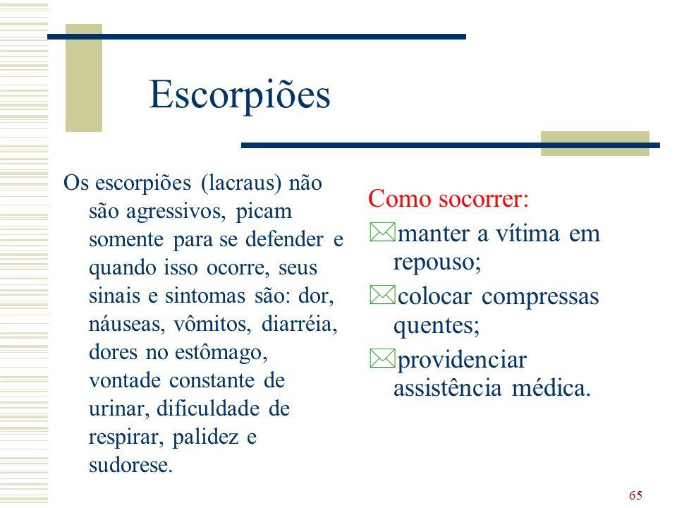 Escorpiões Como socorrer: manter a vítima em repouso;